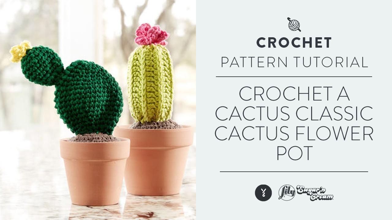 tutorial amigurumi cactus # 1    misyelshin crochet - YouTube   720x1280