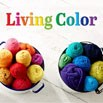 Living Life in Color! | Blog