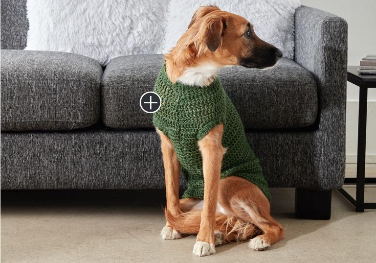Easy Crochet Dapper Pup Sweater