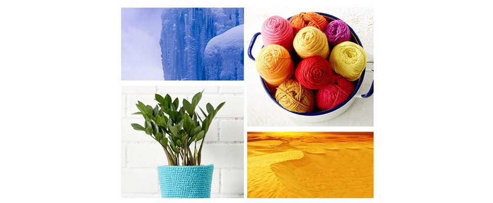 Living Color Inspiration