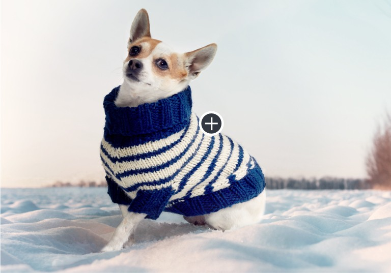Easy Striped Knit Dog Coat