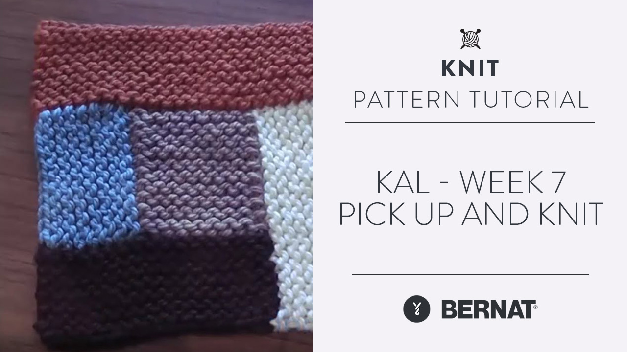 KAL - Week 7 - Pick up and Knit