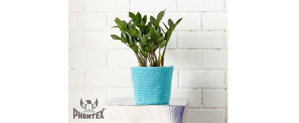 Living Color Plant Holder
