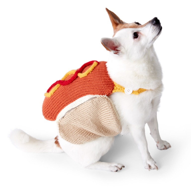 Intermediate Knit Hot Diggety Dog Coat