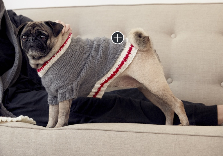 Easy Knit Work Sock Dog Coat