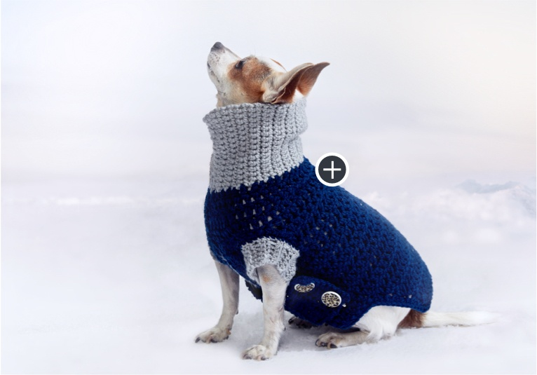 Easy Cowl Neck Crochet Dog Coat