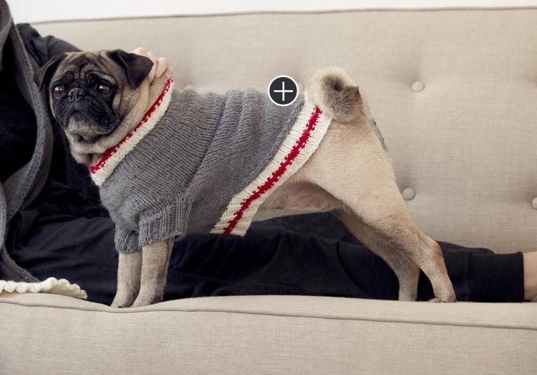 Easy Knit Work Sock Dog Coat